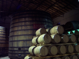 Mendoza winery tour LaGarde
