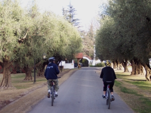 Mendoza winery biking