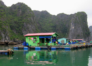 Cat Ba's floating homes