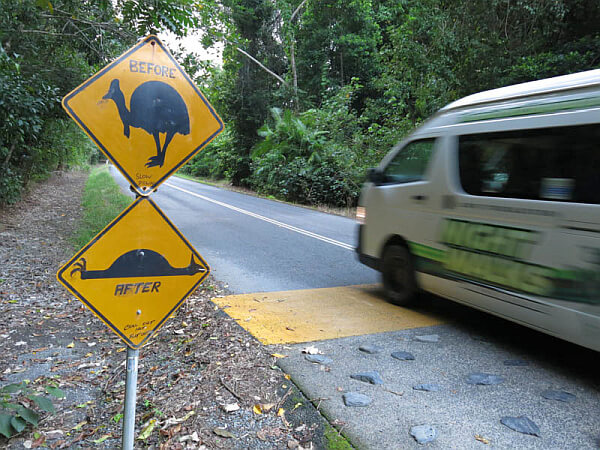 Signs for Cassowary
